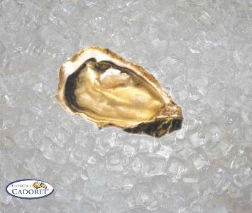Cordoret - Perles Marennes