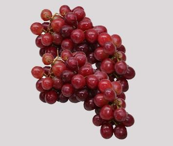Red Glope Grape