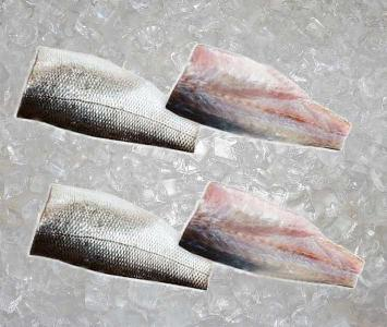 Sea Bass - Fillet