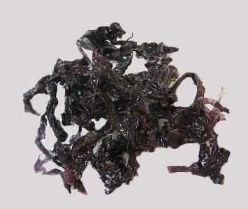 Seaweed - Nori