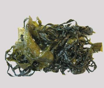 Seaweed - Wakame