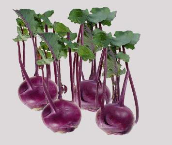 Turnip with Leaves